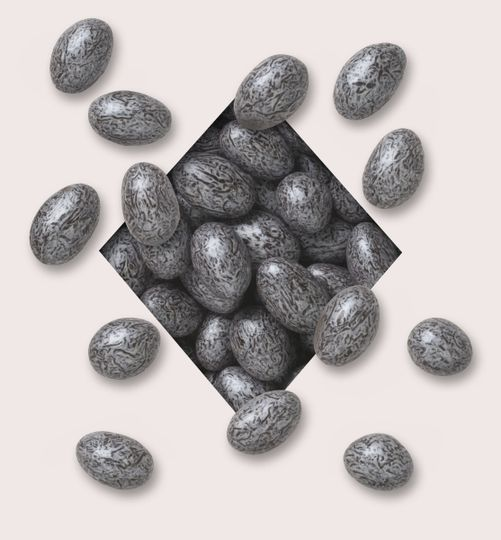 Silver Almonds Jewels
