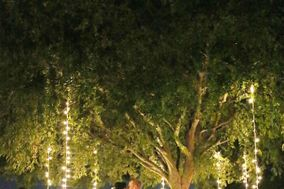 Arizona UpLighting - Bistro String Lighting, Up Lighting, Monogram, Paper Lanterns
