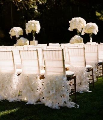Tmx 1493435360774 Curly Willow Chair Caps Woodbridge, District Of Columbia wedding rental