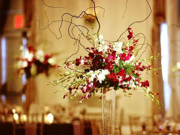 Tmx 1263962978268 Diana2 Greenwich wedding planner