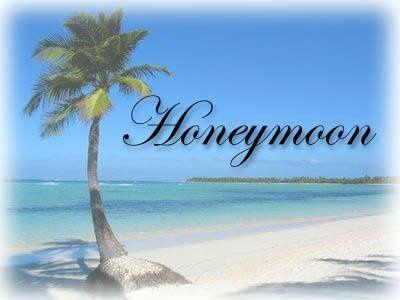 Tmx 1359579712737 Honeymoonlogo Wilmington wedding travel