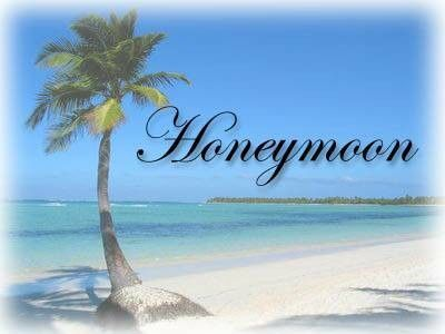 Tmx 1425018114540 Honeymoonlogo Wilmington wedding travel