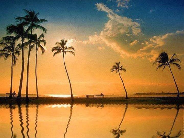 Tmx 1425018292112 Hawaii Sunset Wilmington wedding travel