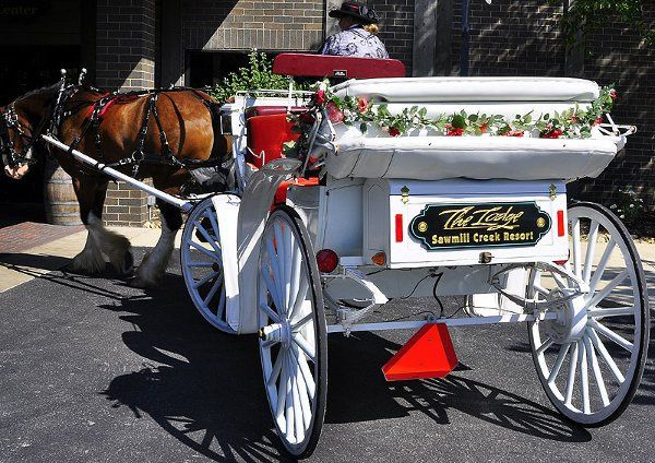 Horse-drawn carriage to the Lake Ceremony