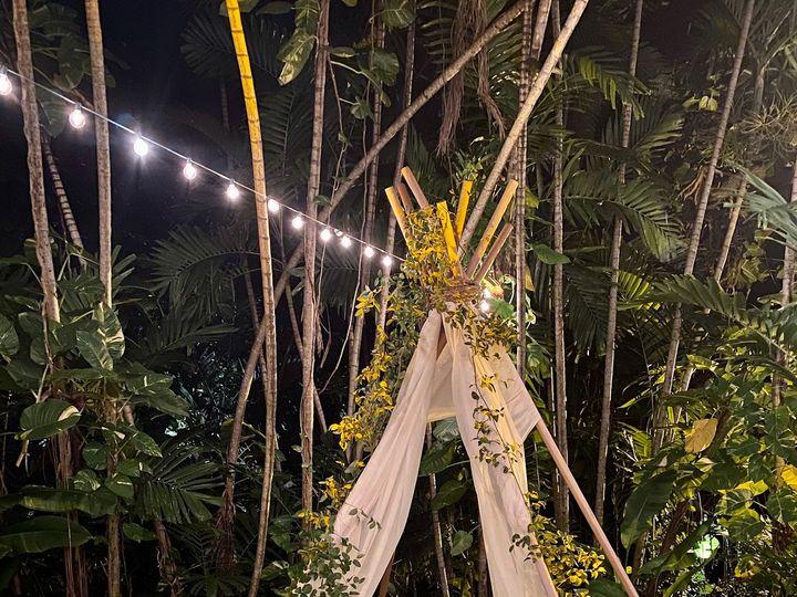 Tmx Img 0048 51 177268 159968040086835 Miami, FL wedding florist