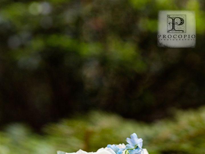 Tmx 1365384618849 050512w Procopio Photography 001 Alexandria, VA wedding florist