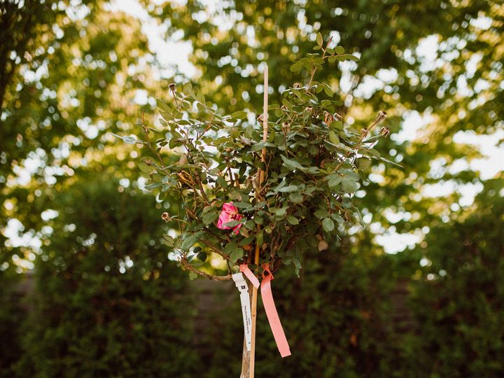 Tmx Tree Planting Ceremony Setup 51 915368 Saint Clair Shores, MI wedding planner