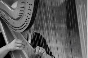 Queen Harp, Carlsbad Harpi