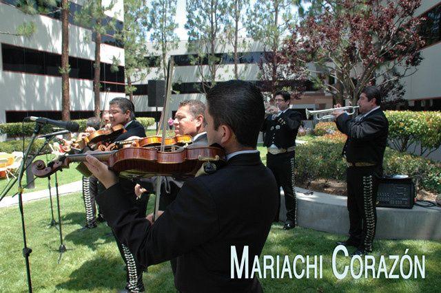 Ace Of Hearts Mariachi Corazón