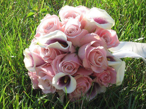 Tmx 1221677107884 IMG 1075 Hamilton wedding florist