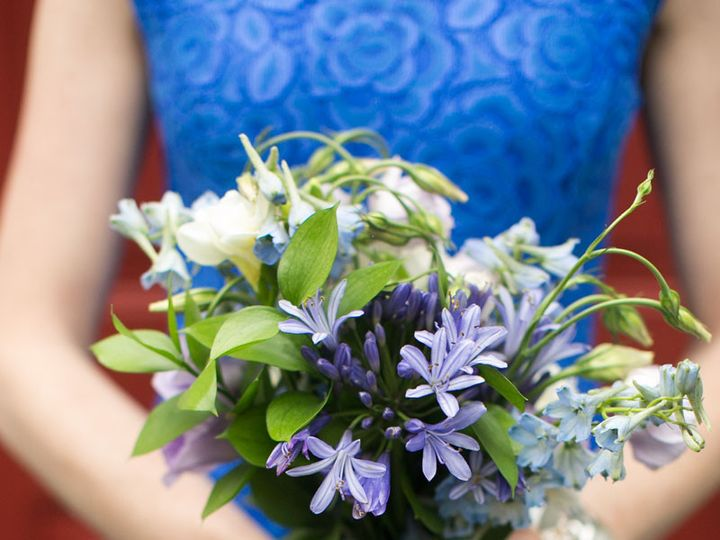Tmx 1471109241815 Julie Napear Photography Bouquet Blue Delphinium H Hamilton wedding florist