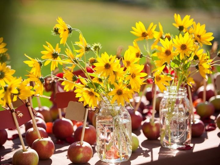 Tmx Lcc Sunflowers 51 634468 Waldoboro, ME wedding catering