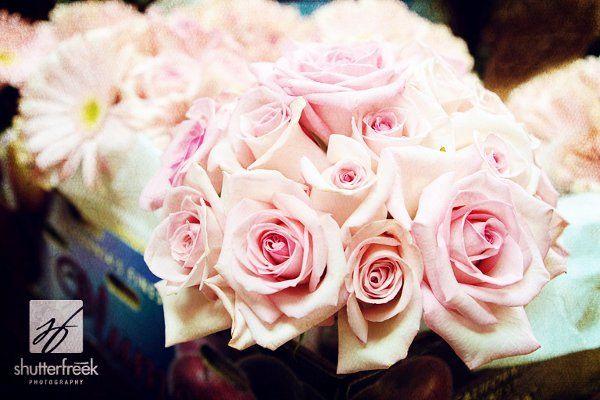 Simple pink rose bridal bouquet.  Photo by shutterfreek.com