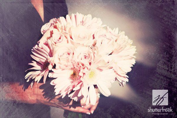 Bridesmaid bouquet of pink gerbera daisies and roses.  Photo by shutterfreek.com