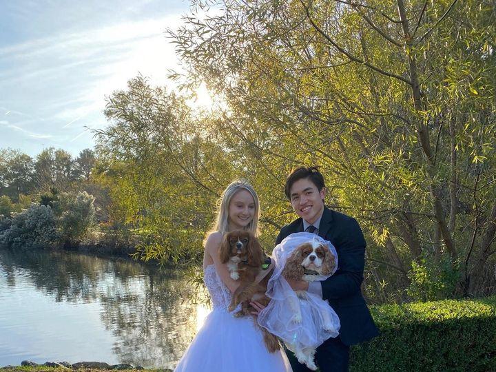 Tmx Dog Wedding 51 172568 161054895424994 Virginia Beach, VA wedding venue