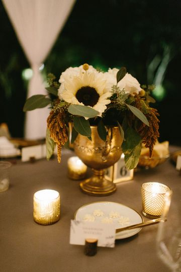 Ivory Grace Events