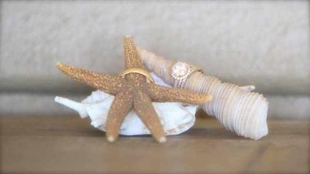 maui wedding rings shells scp