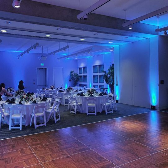 Uplights for your Wedding