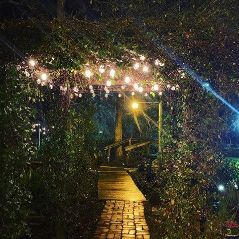 Tmx Safe Image Php 51 713668 161680484216176 Marrero, LA wedding venue