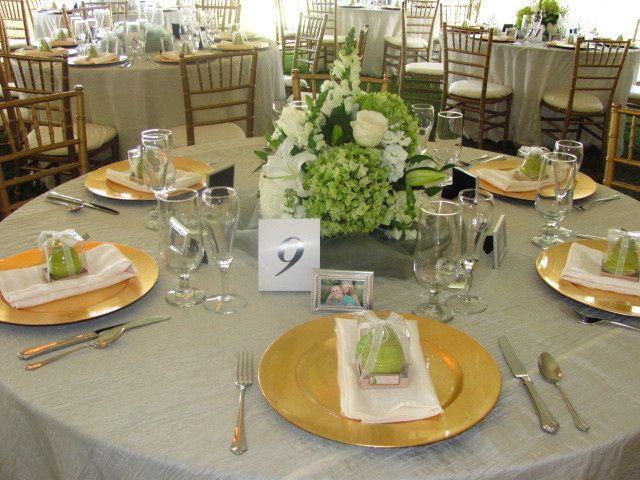 Tmx 1466800348864 Img2351 Saint Augustine wedding rental