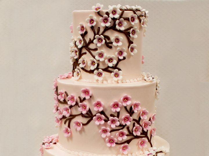 Tmx 1470855819657 3tot Light Pink Buttercream Magnolia Flowers Branc Chicago wedding cake
