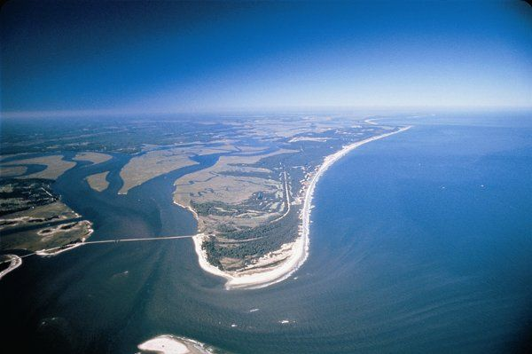 Amelia Island is a resort island approximately 11 miles long and 3.5 miles wide at the largest...