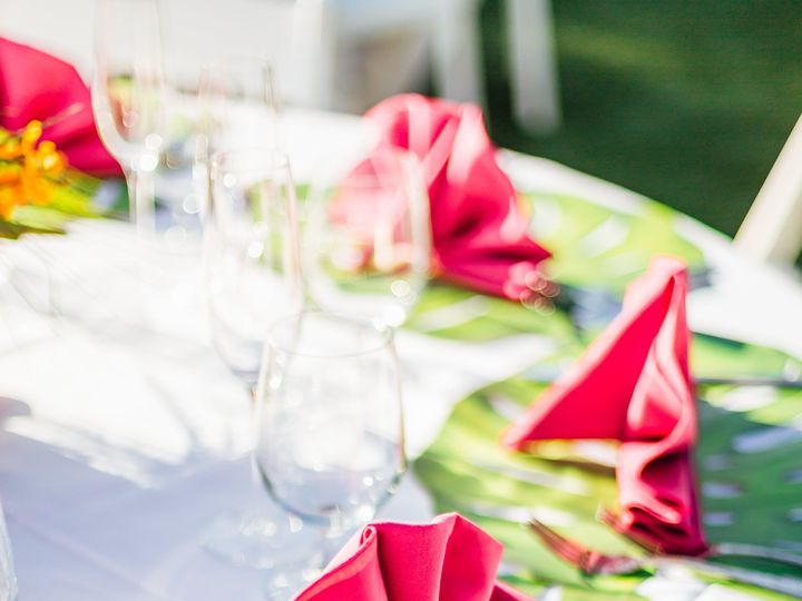Tmx 2018dellamonicawedding 800 51 500768 Saint Petersburg, FL wedding planner