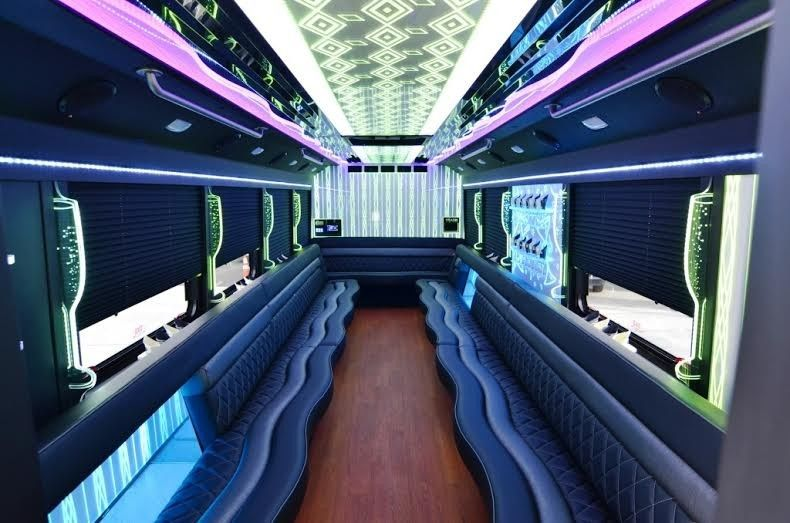 limo party bus 29 passenger