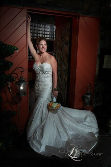 Bride and gown