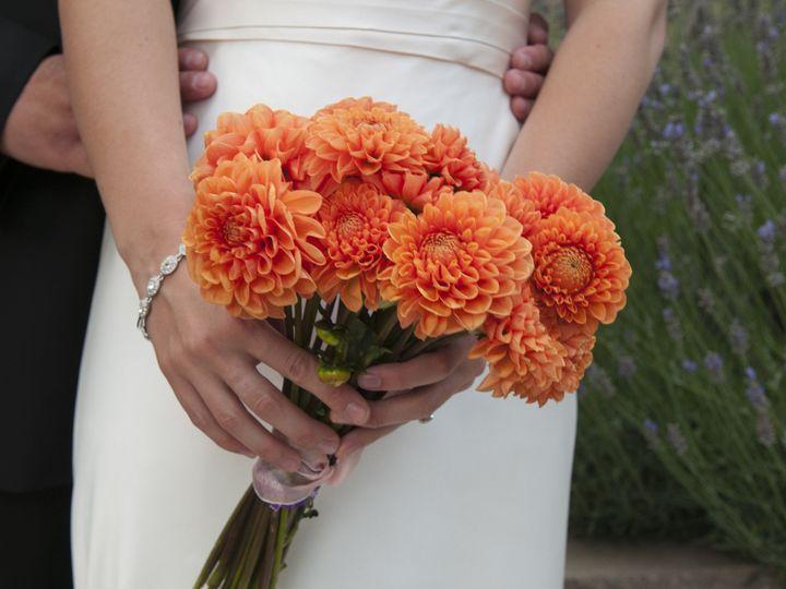 Tmx 1417745826930 Dsc0129 Santa Cruz wedding photography