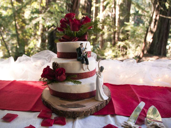 Tmx 1420617525168 Dsc0022 Santa Cruz wedding photography