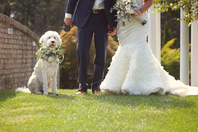 The newlyweds with their dog