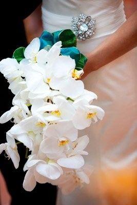 Tmx 1452274688567 3446314677218894911031723n San Diego, CA wedding planner