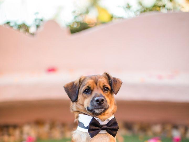 Tmx 1509725215762 Lavalenciawedding1386 San Diego, CA wedding planner