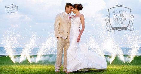 weddingpic palace