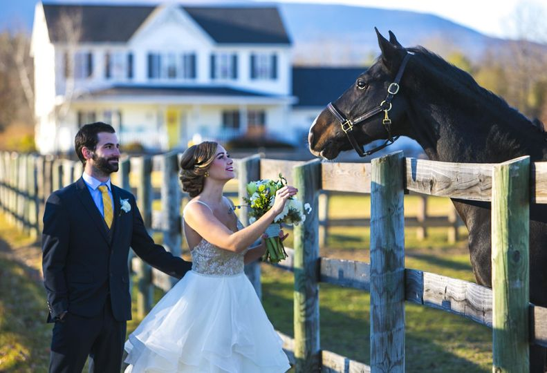 The bride and the horse