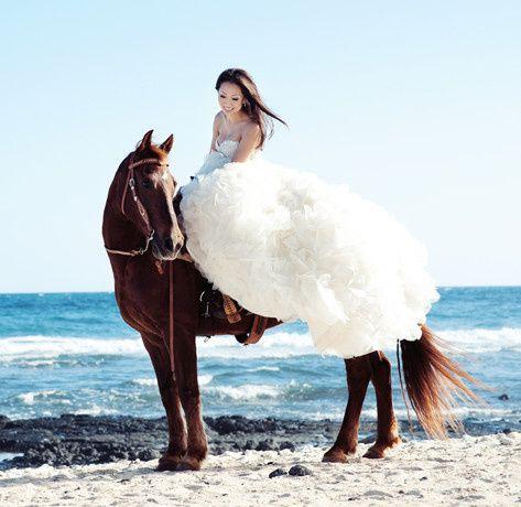Tmx 1376794259810 Horsie Dallas wedding dress