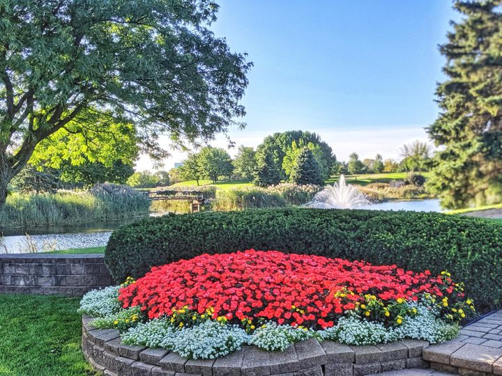 Red flowers pond and fountain