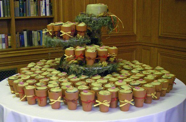 Flower pot cupcakes with seed packet favors.  Its a wedding cake and favors all in one.