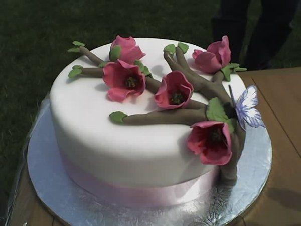 Tmx 1313954339530 DogwoodBlooms Wentzville wedding cake