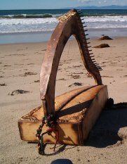 Harp music on the beach for an intimate outdoor wedding
