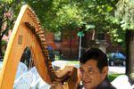 Harpist - Reuben Correa Music image