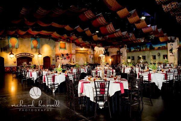 Savanna Wedding Reception