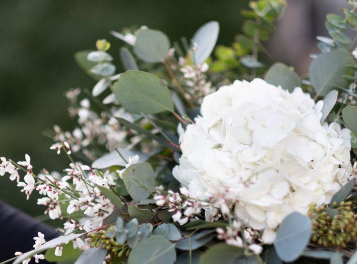 White blossom-Waldorf photo
