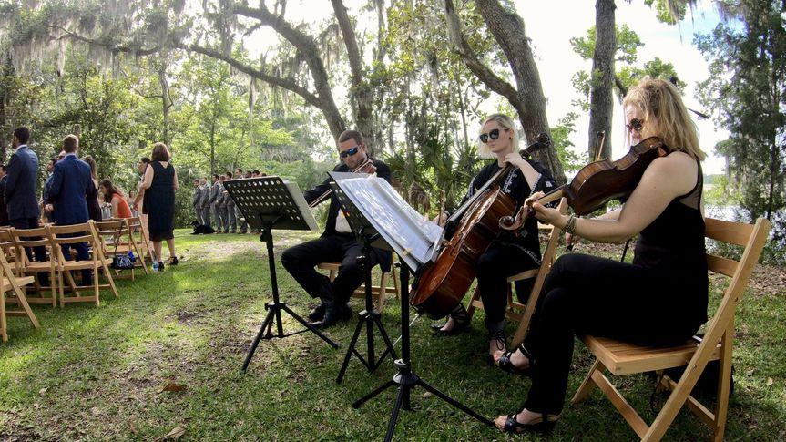 String Trio at Runnymede!