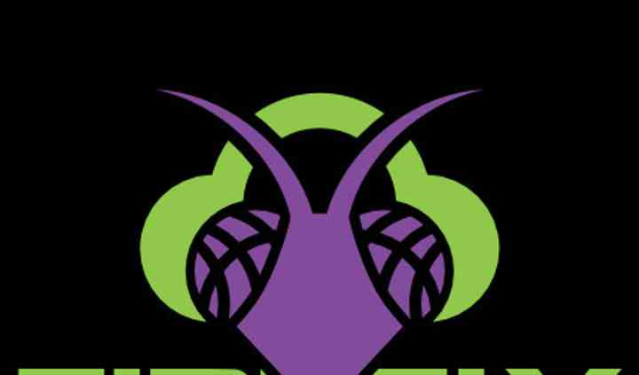 Firefly DJs