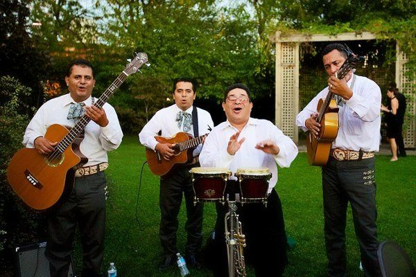 Tmx 1334334373407 8GalleriaMarchettiWeddingSweetchicEventsSteveKooPhotographyBand Chicago wedding planner