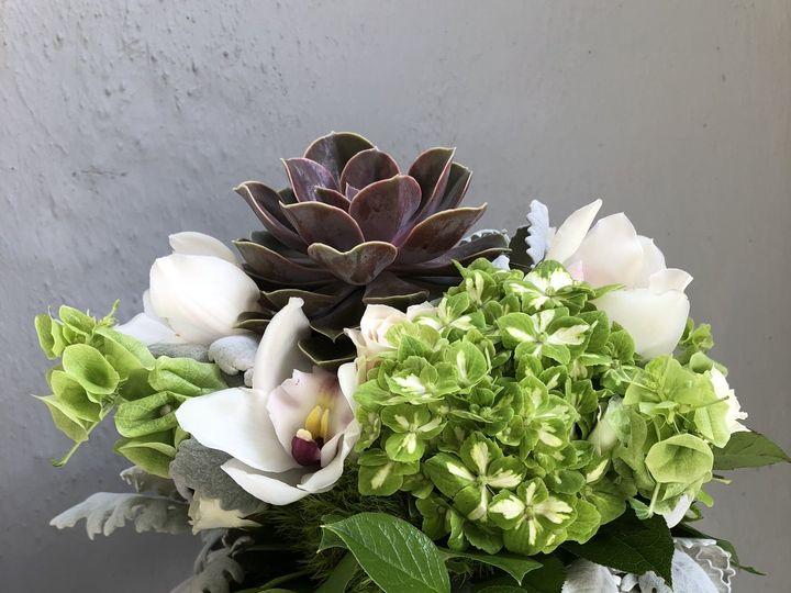 Tmx Img 5234 51 972478 San Rafael, CA wedding florist