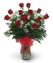 rosespecial