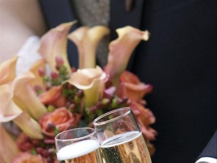 Tmx 1217691062895 ChampagneToast Lisle wedding catering